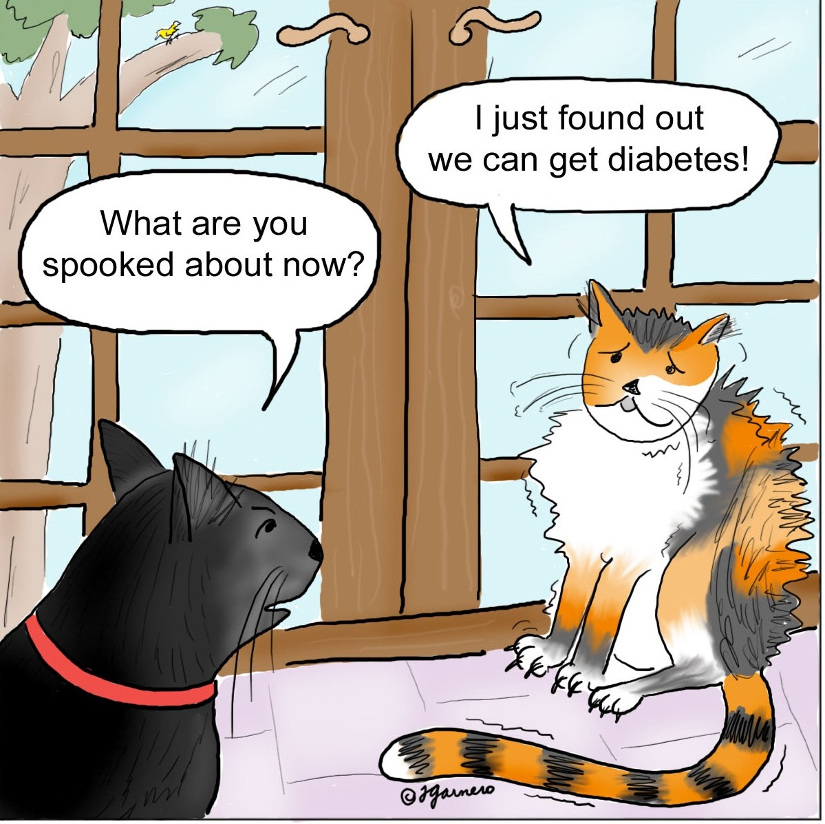 Can Dogs Be Diabetic