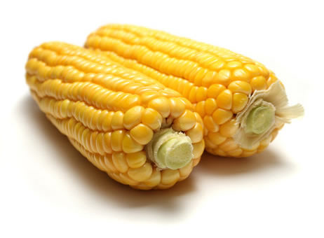 Is Corn A Bad Pet Food Ingredient?