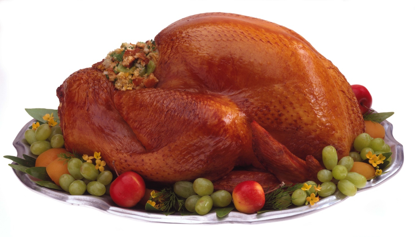 Can Pets Safely Eat Turkey on Thanksgiving?
