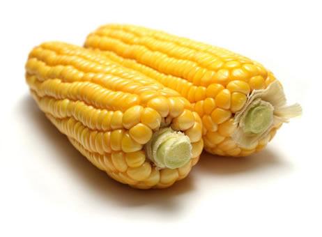 Is Corn A Bad Pet Food Ingredient?